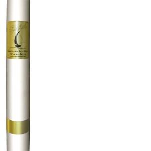 Sidewinder mast - Gold