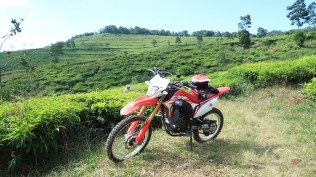Honda CRF150L Goes To MXGP Semarang 07 P7