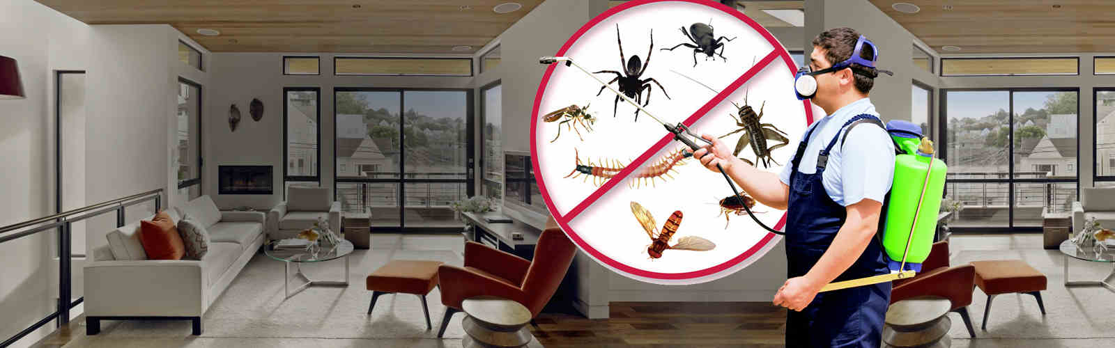 Image result for pest control banner