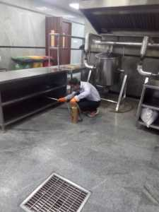 Pest Control Services for Food Industries in Nagpur