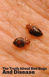 Bed bugs and disease