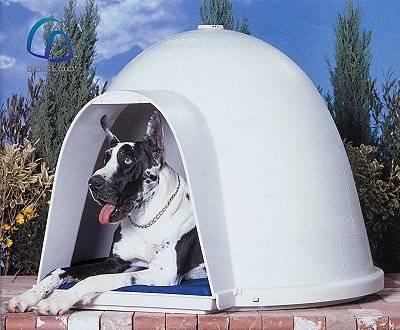 Dogloo Igloo Dog Houses