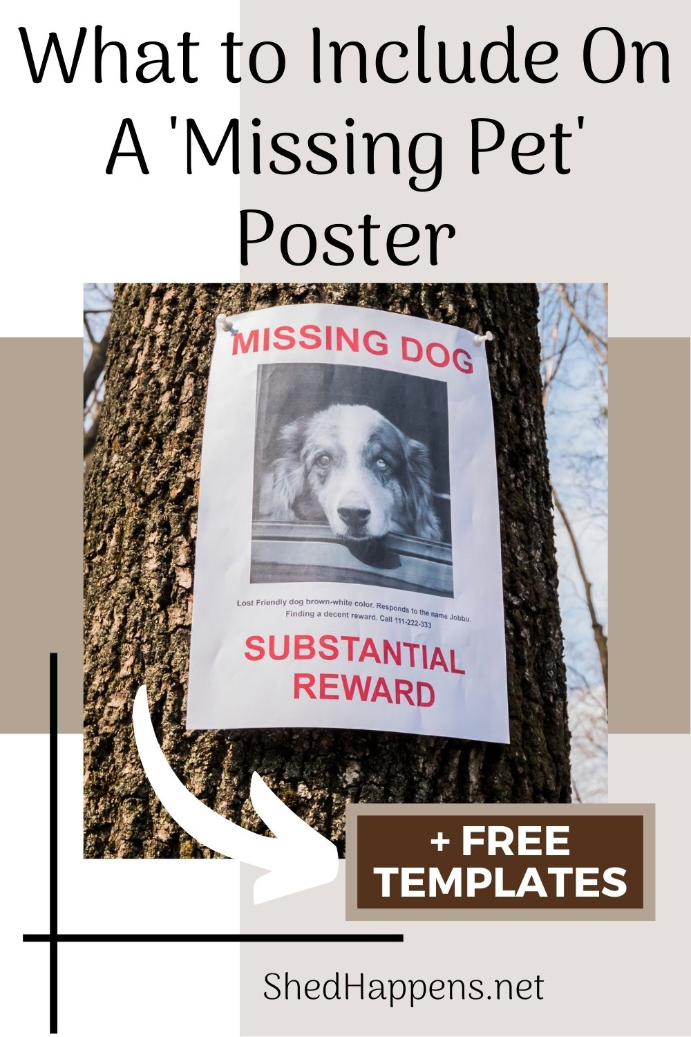 what to include on a missing pet poster
