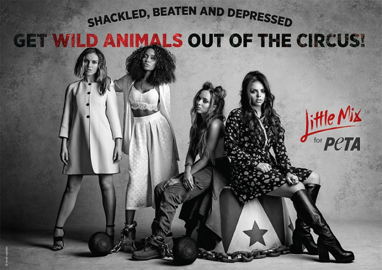 little mix PETA circus campaign