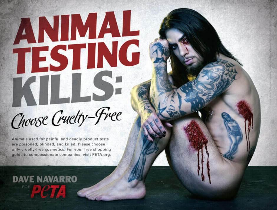 Diga não aos testes em animais. Cruelty-free cosméticos