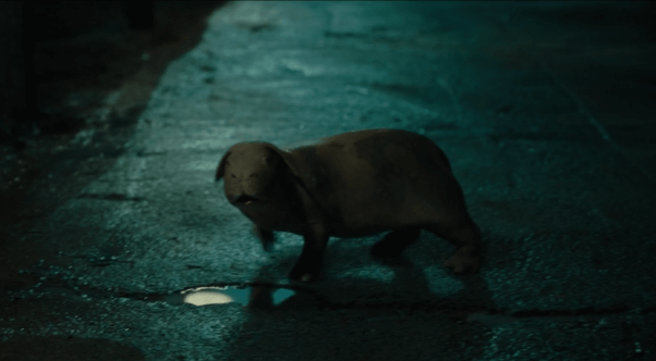 Okja Is Not As Far From Fiction As You Might Think PETA