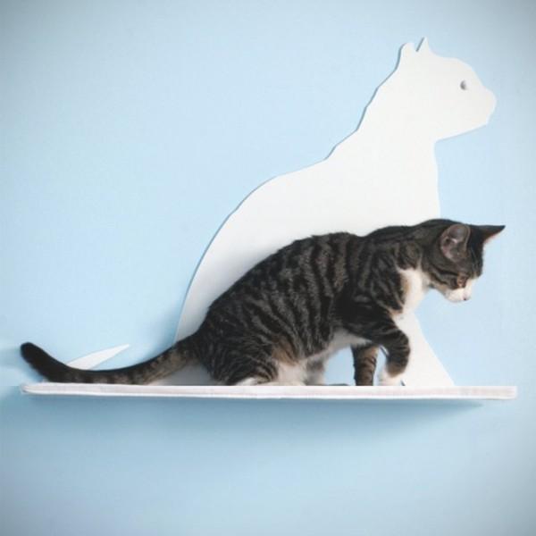Cat Silhouette Cat Shelf