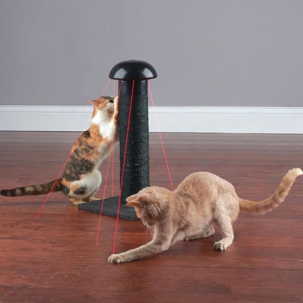 Cat Laser Scratch Post
