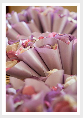 Silk Rose Petals Freeze Dried Rose Petals Petal Garden