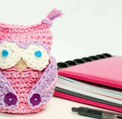 Crochet Owl Apple Cozy Pattern