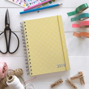 Make 2019 The Year! Personal Planner Giveaway & Coupon Code