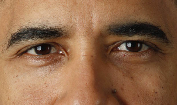 A Closer Look at Obamas New Official Presidential Portrait firstphotoeyes