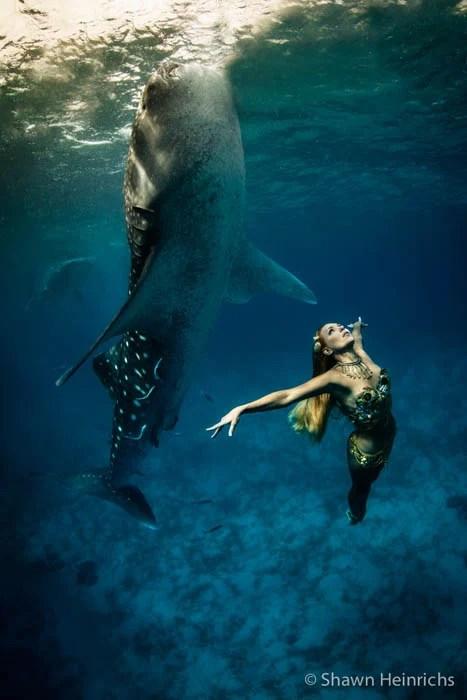 An Underwater Fashion Shoot Featuring a Whale Shark whalesharkfashionshoot 9