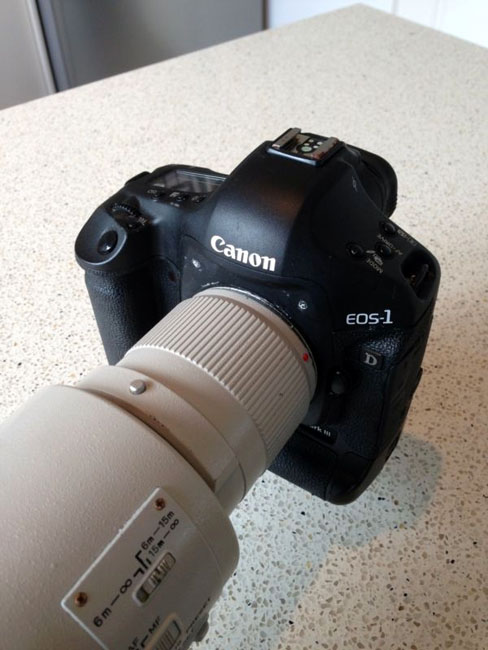 For Sale: A Canon 1D Mark III and 600mm f/4 That Took a Saltwater Bath submergedcanon1d 2