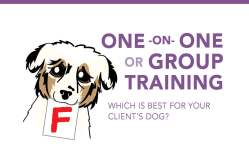 One -On- One or Group Training