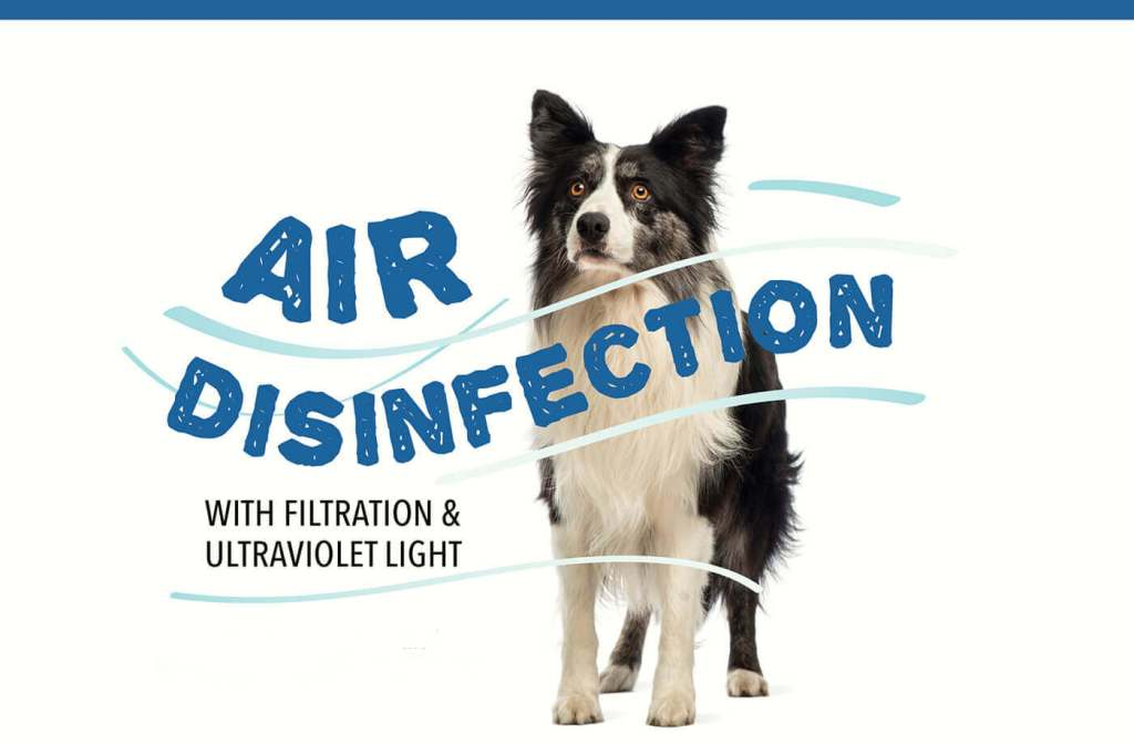 Air Disinfection with Filtration & Ultraviolet Light