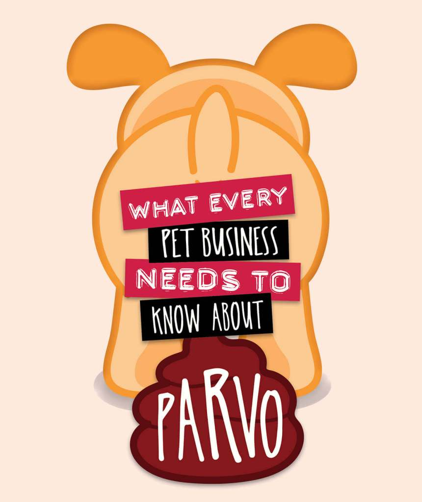 What Every Pet Business Needs To Know About Parvo