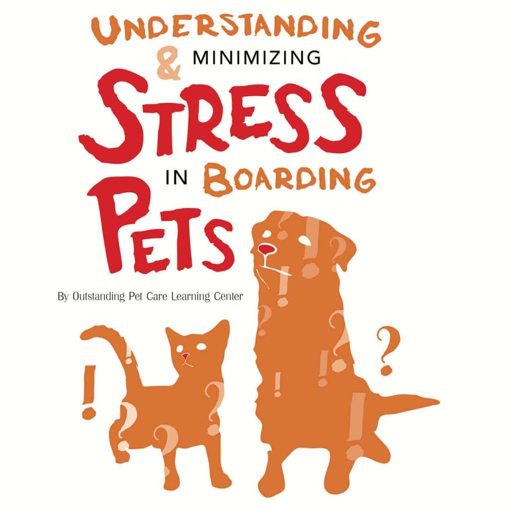 Understanding & Minimizing Stress In Boarding Pets