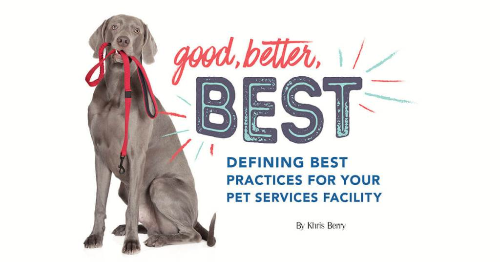 Good, Better, Best: Defining Best Practices For Your Pet Services Facility