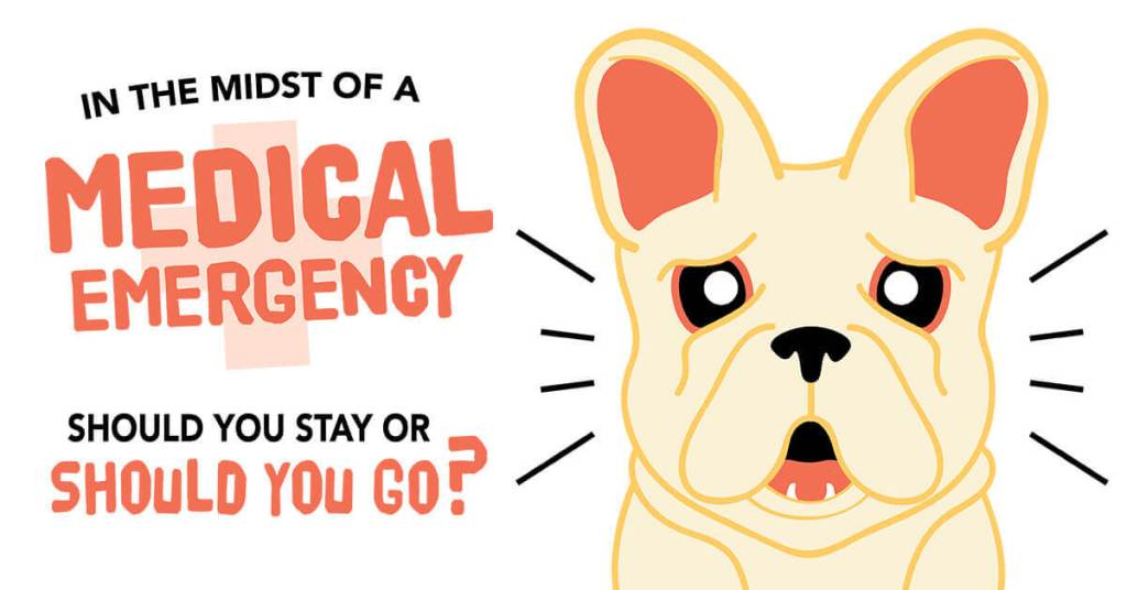 In the Midst of a Medical Emergency: Should You Stay or Should You Go?