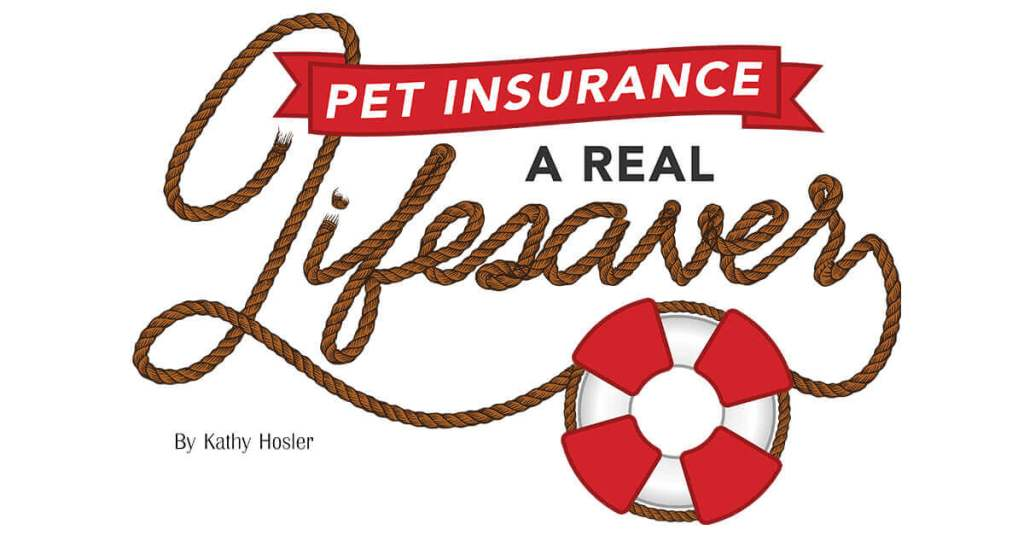 Pet Insurance: A Real Lifesaver