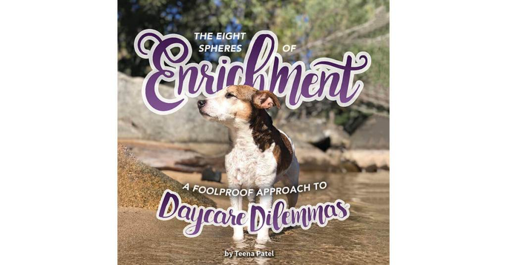 The Eight Spheres of Enrichment: A Foolproof Approach to Daycare Dilemmas