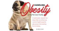 Handling Obesity in the Pet Care Facility