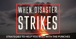 When Disaster Strikes: Strategies to Help You Roll with the Punches