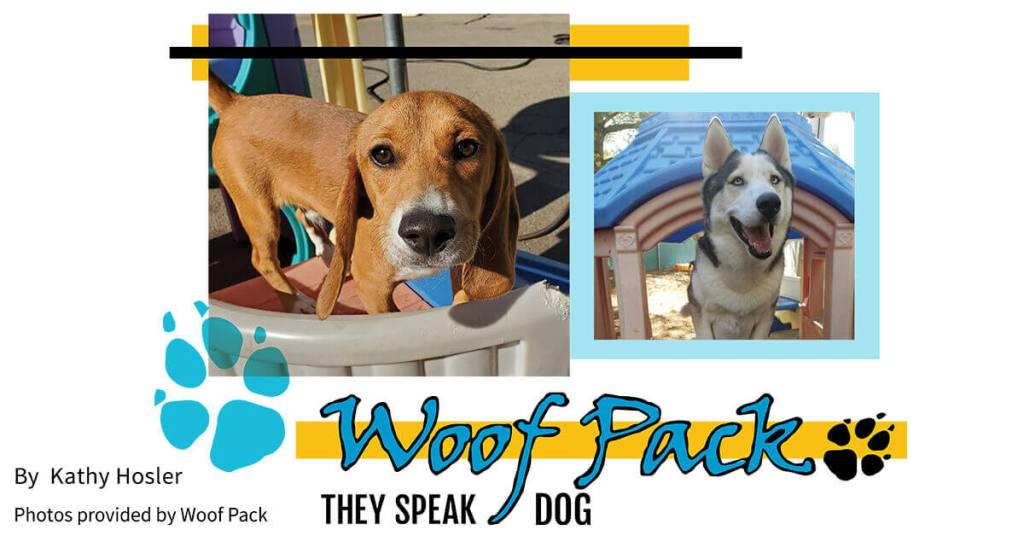 Woof Pack: They Speak Dog