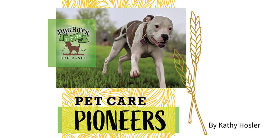 Dog Boy's Dog Ranch: Pet Care Pioneers