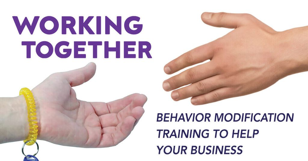 Working Together: Behavior Modification Training to Help Your Business