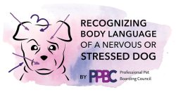 Recognizing Body Language of a Nervous or Stressed Dog