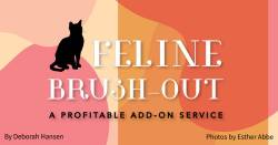 Feline Brush-Out: A Profitable Add-on Service