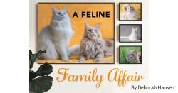 A Feline Family Affair