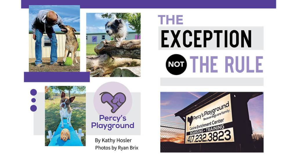 Percy's Playground: The Exception Not the Rule