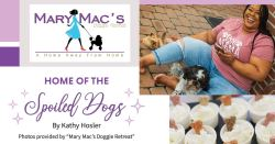 Mary Mac's Doggie Retreat: Home of the Spoiled Dogs