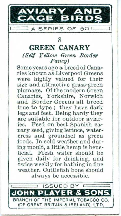 Green Canary — AVIARY AND CAGE BIRDS UK CARDS (1933)