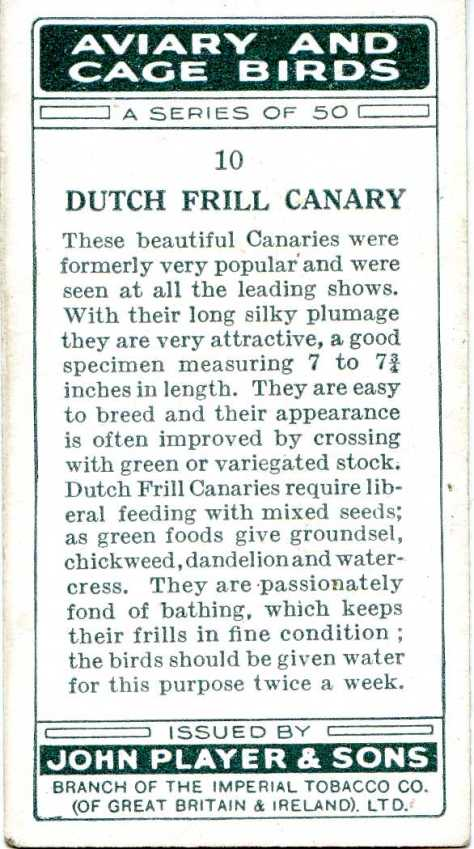 Dutch Frill Canary — AVIARY AND CAGE BIRDS UK CARDS (1933)