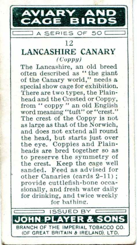 Lancashire CANARY — AVIARY AND CAGE BIRDS UK CARDS (1933)