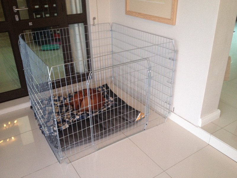 Deluxe Chinchilla Cages