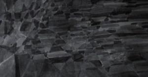 Sparrowhawk (Accipiter nisus). Eskdale