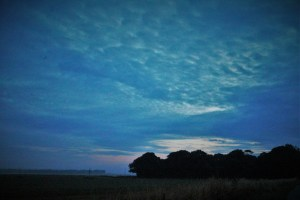 . Silence at Dawn, Salisbury Plain 5 am 22 7 16