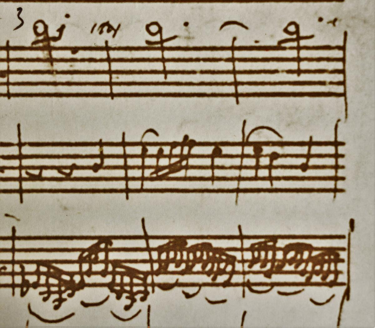 Five' (working title) A Mozart project | Peter Sheppard Skærved