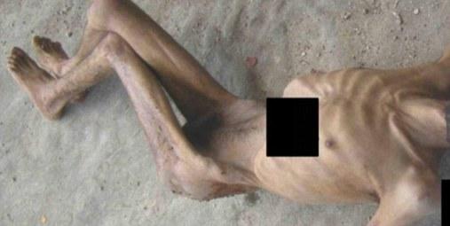 http://www.petercliffordonline.com/syria-news