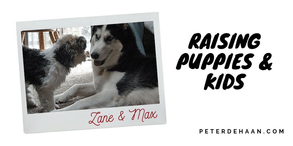 Raising Puppies and Kids