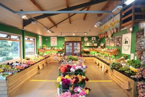 Commercial lighting at Washingpool Farm Shop, Bridport