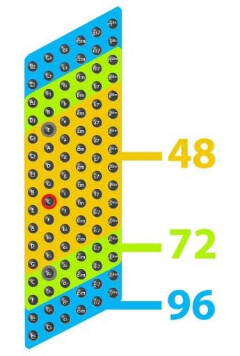 Das Bassfeld am 48-72-96-bässigen Akkordeon