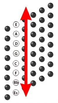 Anordnung der Basstöne in den Akkordeonknöpfen
