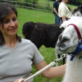Wunderschön! Ja, auch das Lama.