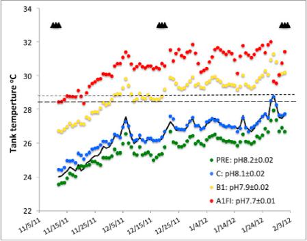 Dove PNAS 2013 temperature profiles in tanks